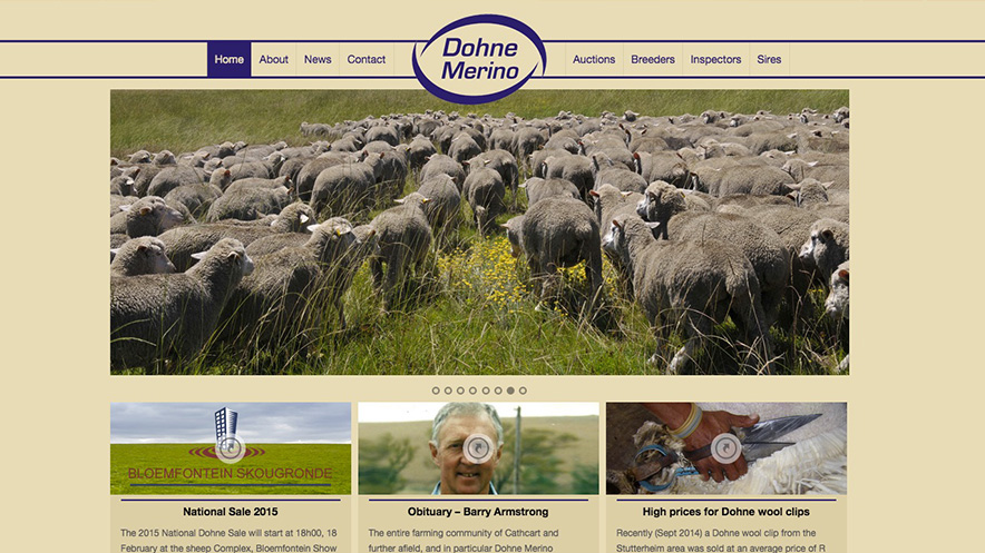 this-side-up-media-webdesign-somerset-west-seo-dohne-merino